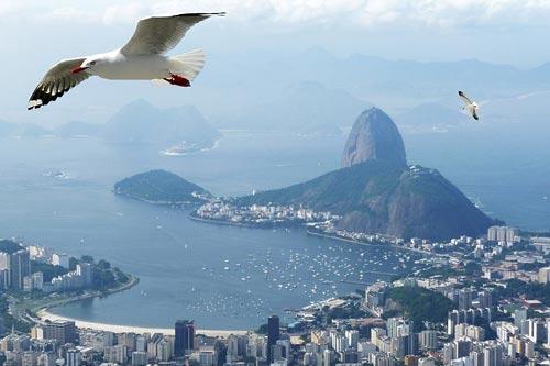 Guide Brésil