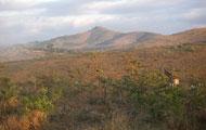 Visiter le Kwazulu-Natal