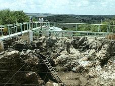 Hominidés fossiles de Sterkfontein, Swartkrans, Kromdraai...