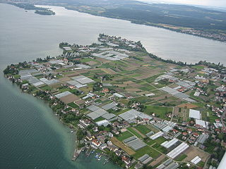 Ile monastique de Reichenau