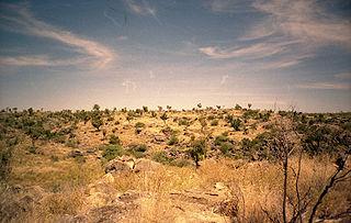 Sites fossilifères de mammifères d'Australie
