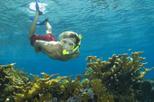 plongée Nassau