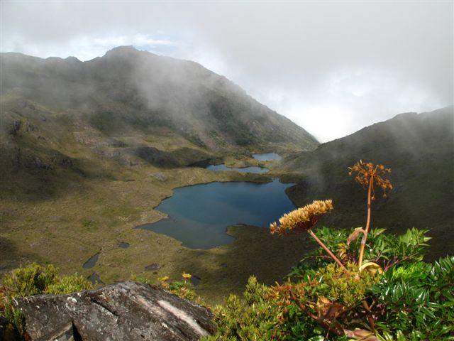 Réserves de la cordillère de Talamanca-La Amistad / Parc national La Amistad
