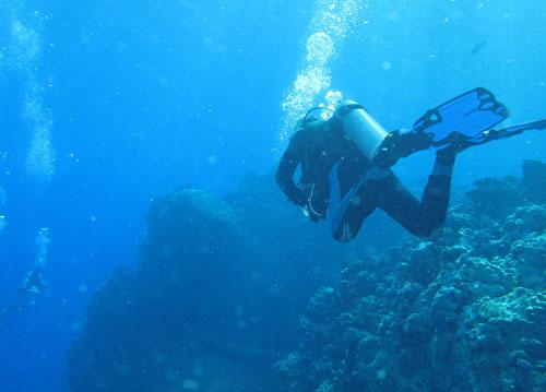 Plongeur mer Rouge