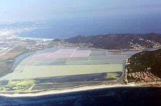 Ibiza, biodiversité et culture