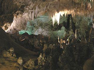 Parc national des grottes de Carlsbad