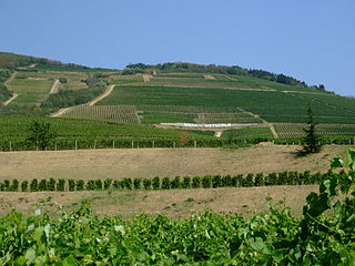 Paysage culturel historique de la région viticole de Tokaj