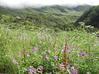 Parcs nationaux de Nanda Devi et de la Vallée des fleurs