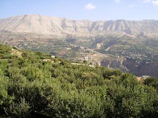 Ouadi Qadisha ou Vallée sainte et forêt des cèdres de Dieu