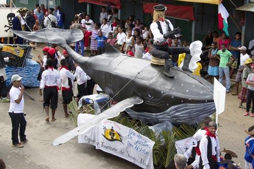 festival baleines