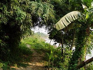 Parc national de Royal Chitwan