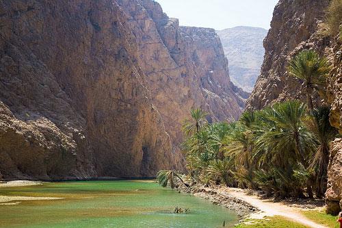 Visiter les wadis omanais