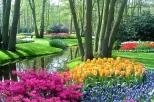 Excursions aux Pays-Bas