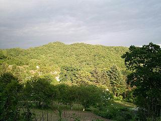 Sikhote-Aline central