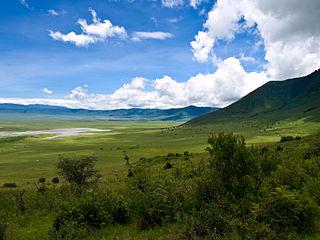 Zone de conservation de Ngorongoro